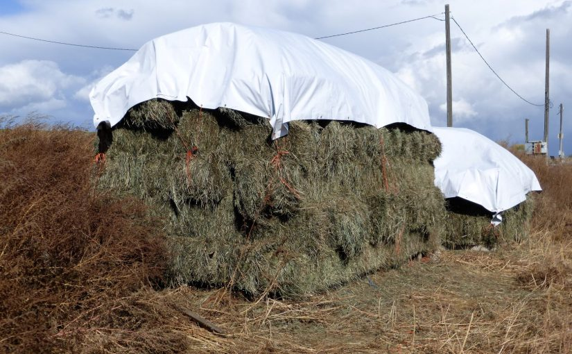 The Winter Hay Stacks are Almost Finished.